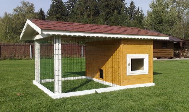 Будівництво курника на дачі